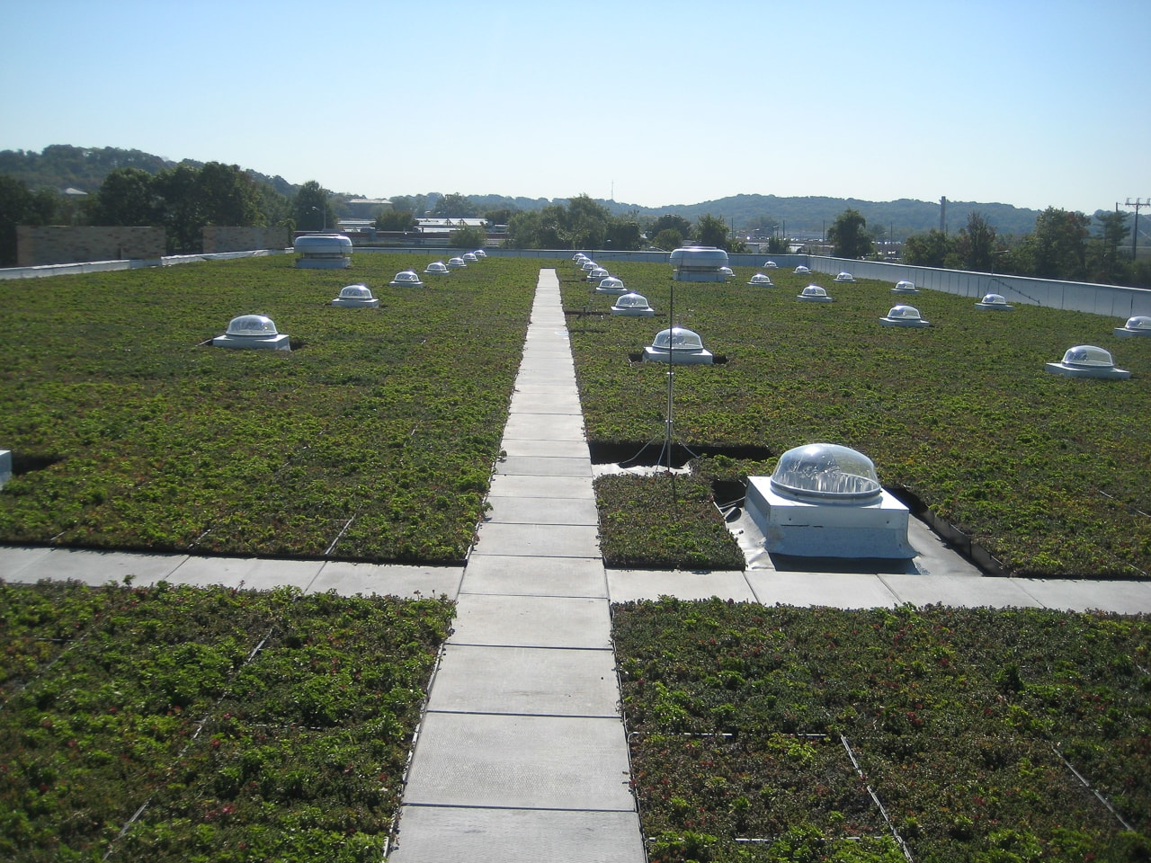 Green Roof  24