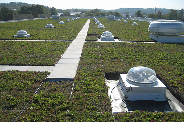 "Vegetative ""Green"" Roof"